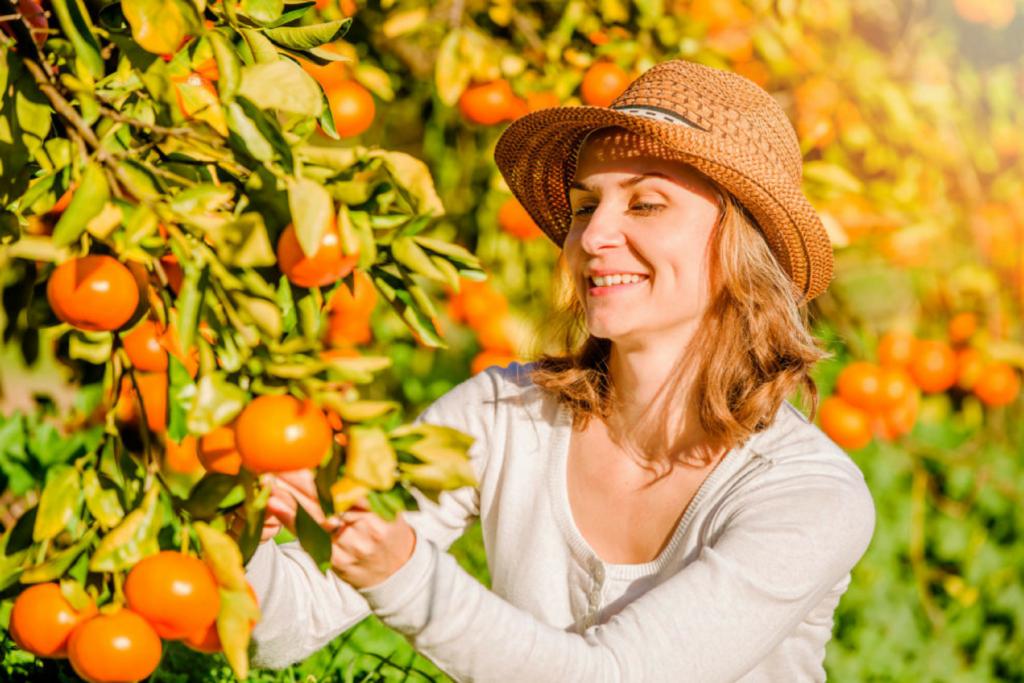 Frau am Obstbaum lächelnd Liebe